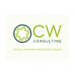 CW CONSULTING